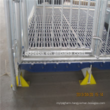 Hot Sale Economical Weaning Stall Pig Breeding Equipment